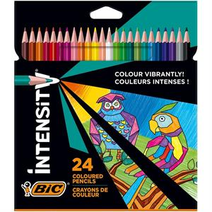 Bic Color Up 24 Renk Kuruboya 950528