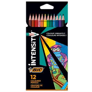 BİC COLOR UP 12 RENK KURUBOYA 950527